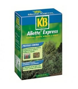 Aliette express kb